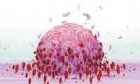 """如何区分""""冷""""""""热""""肿瘤?AACR新成果出妙招助力免疫疗法"""