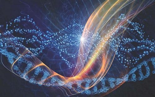 能不能当领导,不仅取决于你的基因,还取决于……