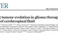 不用手术,比验血灵敏,科学家找到更适合脑肿瘤的液体活检方法