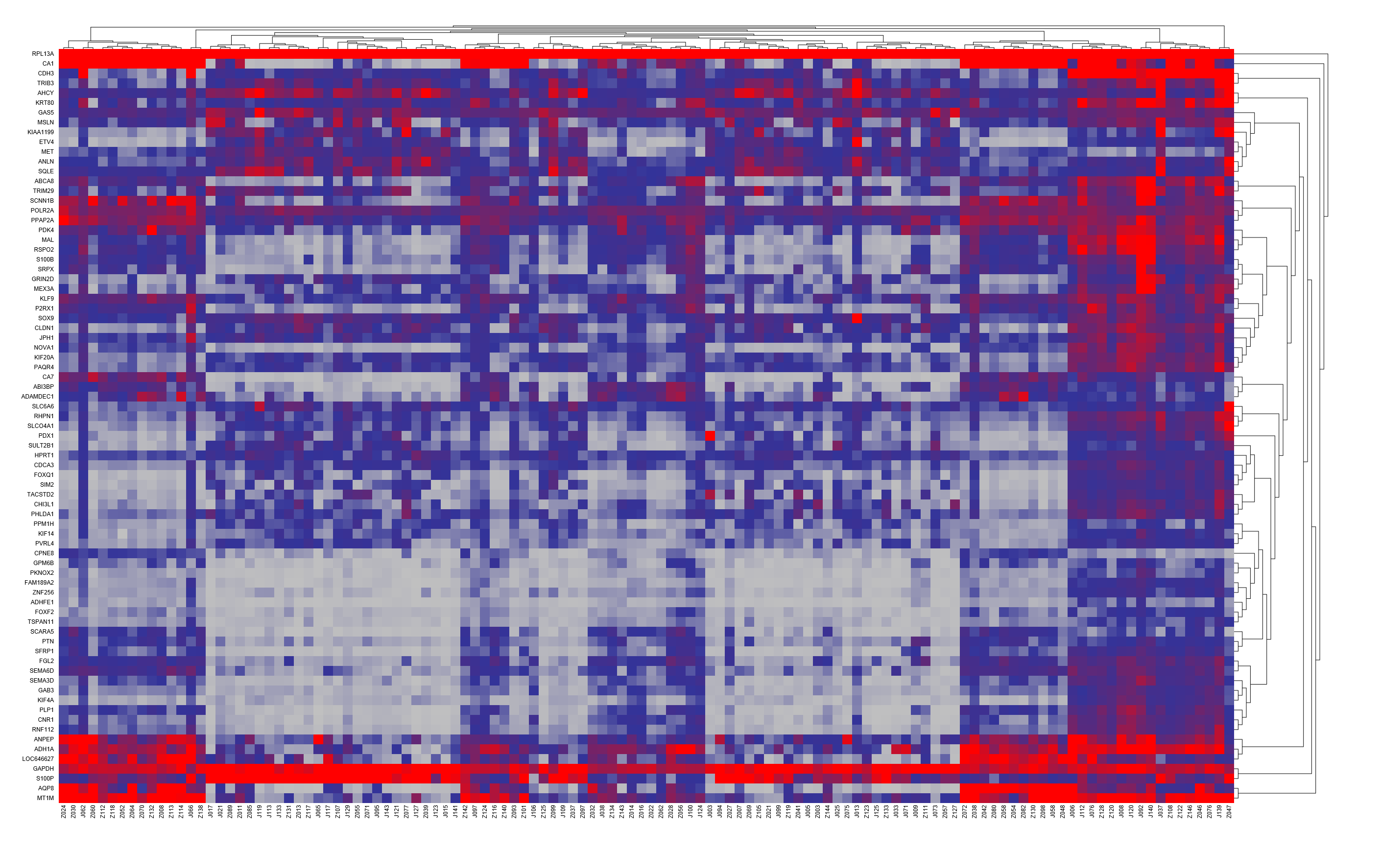 送高通量荧光定量pcr数据