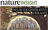 Nature特刊刊登6篇关于神经退行性疾病的综述,为您逐一解说