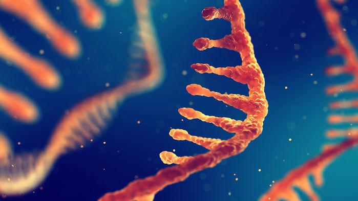 泼冷水?Nature:单碱基编辑会导致RNA脱靶变异