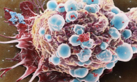 《自然》子刊:突破!科學家首次在多癌種中證實TMB可預測免疫治療效果