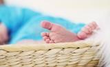 """""""基因编辑婴儿""""事件:高新生物技术滥用缺法律约束"""