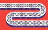 DNA 制造已经进入工业化大生产时代?