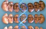 PLoS ONE子刊:最新DNA技术能够绘制犯罪人员容貌特征