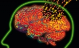 8万例的全基因组关联研究印证阿尔兹海默症是免疫病