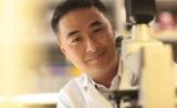 连发两篇Neuron!大脑免疫细胞,治疗痴呆的关键?