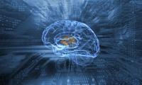 AI诊断脑部疾病,铱硙医疗获北陆药业3000万元A轮投资