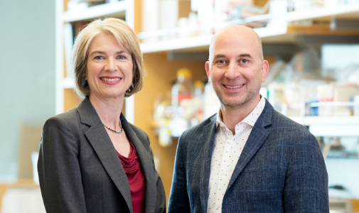 速覽 | GSK聯手CRISPR創始人,加速新藥研發