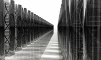 基于DNA或可评估寿命:研究确认12个影响寿命基因区域