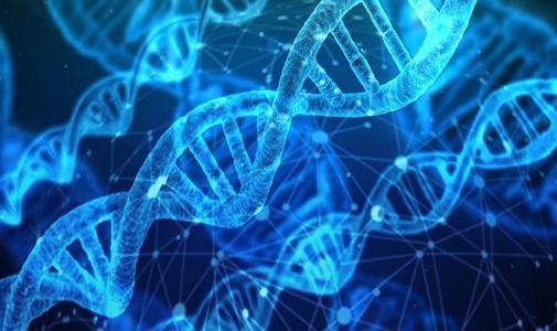 Nature子刊:40%疾病源于基因,25%与环境有关