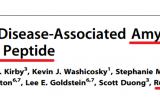"""搞个大发现?""""β淀粉样蛋白可能是大脑的抗菌斗士""""疑问有硬伤"""