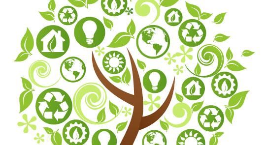 境污染和保持生态平衡