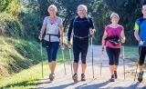 家务、走路、散步……每天体力活动30 min,降低死亡风险