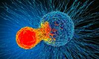 万万想不到,一名霍奇金淋巴瘤患者感染SARS-CoV-2后体内肿瘤竟然消退了