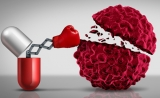 """免疫疗法没效果?除了肿瘤本身,这类细胞 """"干系最大""""!"""
