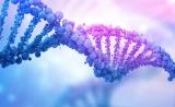 与染色体微阵列相比,测序更应该作为儿童遗传疾病的一线诊断工具|Nature子刊