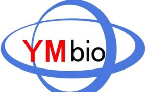免疫组织化学(Immunohistochemistry, IHC) 免疫细胞化学