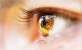 NAT COMMUN:刷新人类视觉极限
