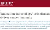 Nature:和想象大不相同!炎症引发肝癌PD-L1分子起关键作用