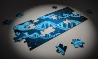 新发现!肠道菌群和血型竟被同一基因调控,肠炎或与你的血型有关