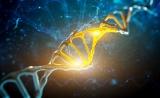 Nature、Cell相继发布多项重磅成果,精准医学进入基因大数据时代!
