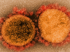 江蘇淮安一浴場出現群體傳播,高溫高濕或難擋病毒入侵