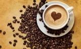 喝咖啡正变得奢侈:气候变化将重创全球咖啡豆主产区