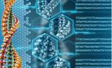 """有了 DNA 存储技术,我们人体就是""""云硬盘"""""""