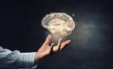 "Brain:给大脑特定区域""挠痒"",可以提高短期记忆"