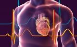 GEN:心脏病领域成精准医学下一个关注前沿