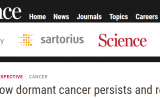 炎症诱导癌症复发?Science揭示:唤醒休眠癌细胞的信号
