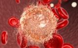 """驳斥先前观点!Nature里程碑:除基因突变,""""太干净""""也会导致儿童癌症"""