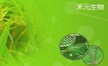 禾元生物: 植物源OsrIGF-1清新上市,新品促销,样品免费送!