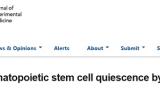 中山大学赵萌组等合作发现巨核细胞调控造血干细胞新机制