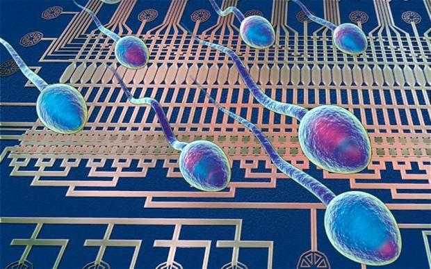 Cell:首个人类精子完整基因序列公布