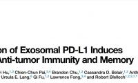 """《细胞》重磅:刷新认知!癌细胞竟会放出""""无人攻击机"""",远程破坏免疫系统总部"""