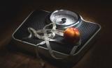 """肥胖会变笨呢?!科学家们找到""""罪魁祸首"""""""