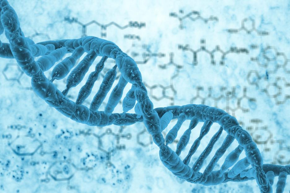解密物种进化密码,天津大学合成www.ca231.com研究取得新成果