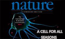 4月25日Nature 杂志生物学精选