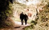 4亿人数据显示,遗传对寿命的影响不到7%!结婚对象更能说明问题