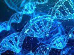 如何防止基因编辑技术突破底线:警惕科学狂人再现