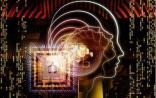 Science:迄今为止最详细的大脑连接图