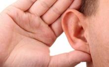 Neuron:科学家再生感音毛细胞恢复小鼠听力