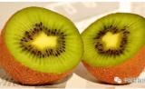 猕猴桃中一种成分可预防非酒精性脂肪肝