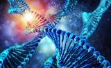 中国学者在Nature Methods发表论文,介绍三代测序数据计算方法的突破