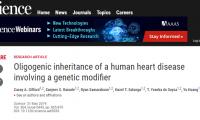 又是CRISPR!Science:这次是发现导致小儿先天性心脏病的致命突变