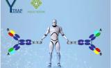 当AI遇上免疫疗法,下一代抗癌抗体呼之欲出
