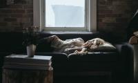 睡眠不足6小时,动脉粥样硬化风险增加27%